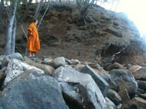 Pandit on the rocks